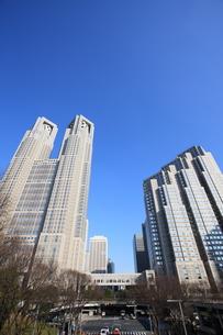 東京都庁の写真素材 [FYI00034431]
