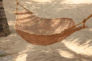 木陰のハンモックの写真素材 [FYI00034657]