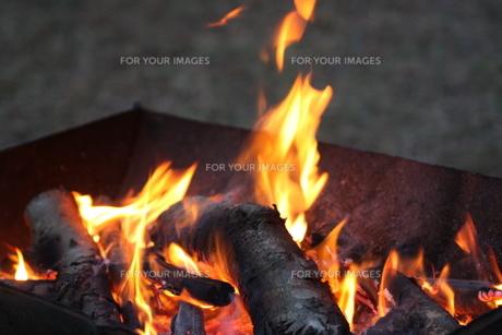 焚き火の写真素材 [FYI00034688]