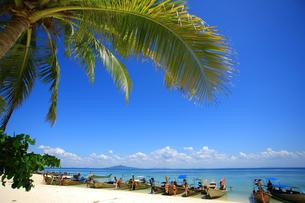 ピピ島近海バンブーアイランドのリゾートビーチの写真素材 [FYI00034795]