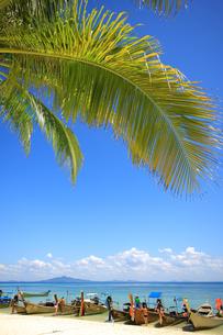 ピピ島近海バンブーアイランドのリゾートビーチの写真素材 [FYI00034801]
