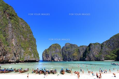ピピ島マヤ湾のマヤ・ビーチの写真素材 [FYI00034832]