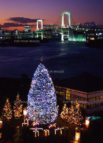 お台場のクリスマスの写真素材 [FYI00034876]