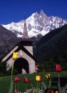 チューリップと教会の写真素材 [FYI00035056]