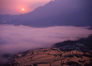 棚田と日の出の写真素材 [FYI00035185]