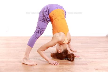 ヨガをする女性(ピラミッドのポーズ)の写真素材 [FYI00035675]