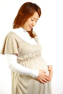 妊婦の写真素材 [FYI00036182]