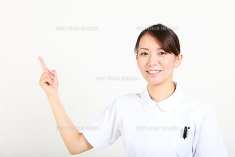 説明する女性看護師の写真素材 [FYI00036396]