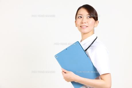 カルテを持つ看護師の写真素材 [FYI00036408]