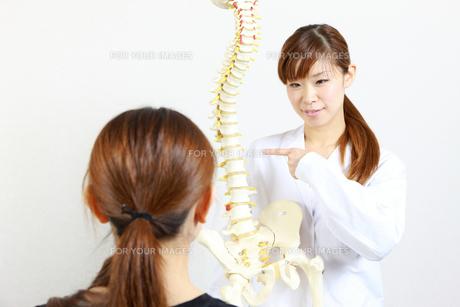 脊椎について説明する整体師の写真素材 [FYI00036494]