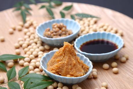 大豆加工食品の写真素材 [FYI00036512]