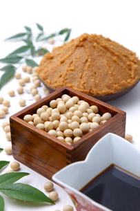 大豆加工食品の写真素材 [FYI00036543]