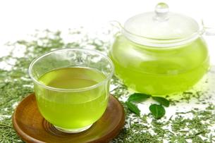 日本茶の写真素材 [FYI00036714]