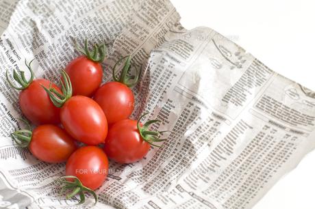 トマトの写真素材 [FYI00036747]