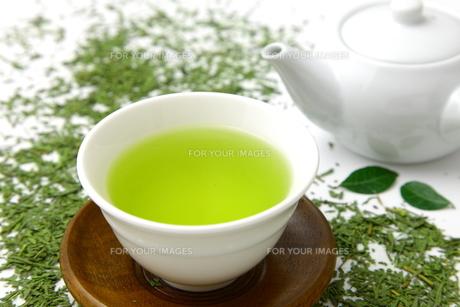 日本茶の写真素材 [FYI00036774]