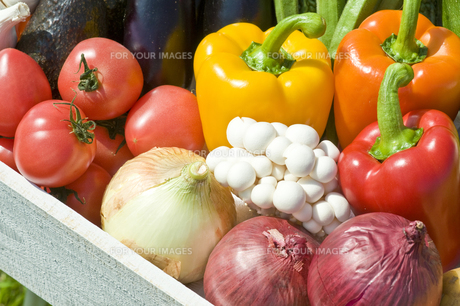 野菜の素材 [FYI00036871]