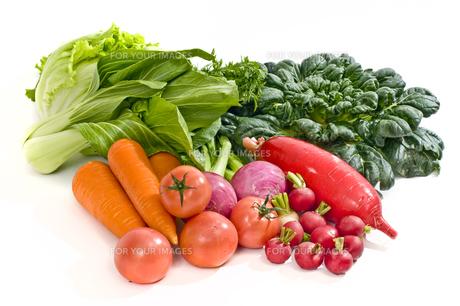 野菜の素材 [FYI00037406]