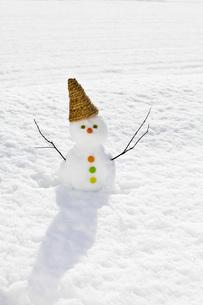 雪だるまの写真素材 [FYI00037412]