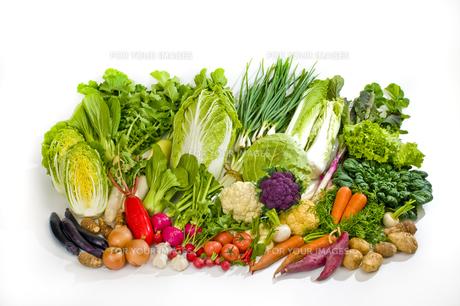 野菜の写真素材 [FYI00037414]