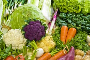 野菜の写真素材 [FYI00037416]