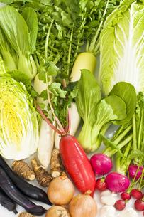 野菜の素材 [FYI00037418]