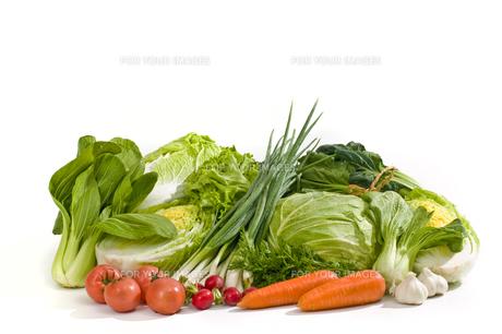 野菜の写真素材 [FYI00037440]