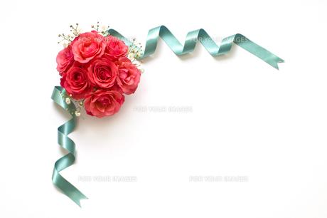 薔薇の素材 [FYI00037503]