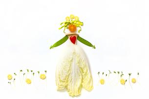 野菜の写真素材 [FYI00037527]
