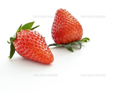 苺の素材 [FYI00037581]