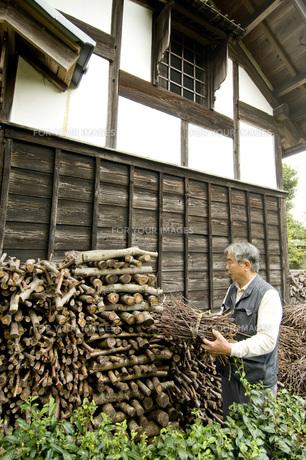 薪の素材 [FYI00037632]