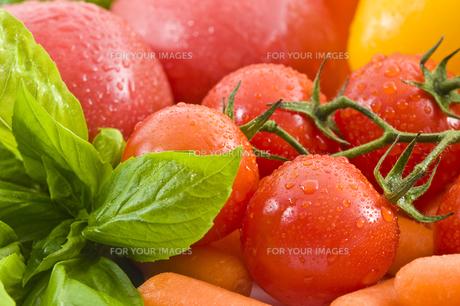トマトの素材 [FYI00037662]