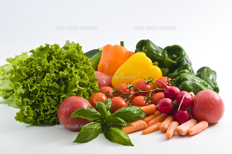 野菜の素材 [FYI00037676]
