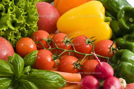 緑黄色野菜の写真素材 [FYI00037701]