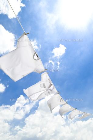 洗濯の素材 [FYI00037705]
