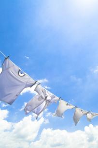 洗濯の素材 [FYI00037708]