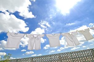 洗濯の素材 [FYI00037709]