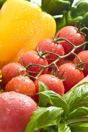 トマトの写真素材 [FYI00037711]