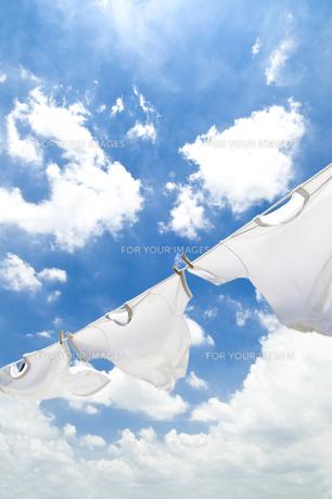 洗濯の素材 [FYI00037712]