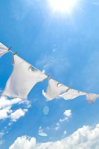 洗濯の素材 [FYI00037713]