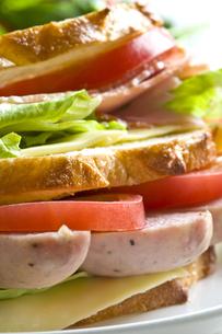 サンドイッチの写真素材 [FYI00037768]