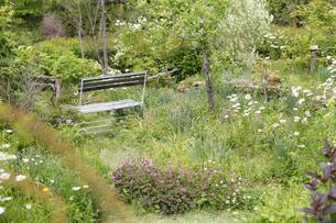 ガーデンの写真素材 [FYI00038015]