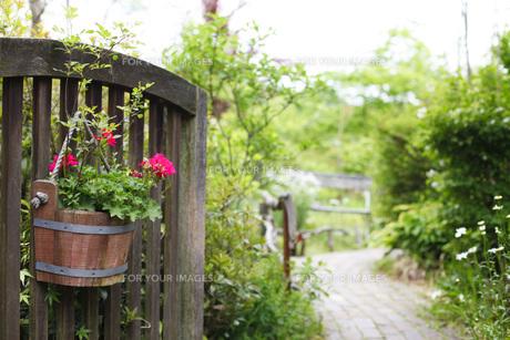 ガーデンの写真素材 [FYI00038022]