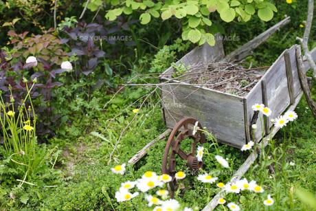 ガーデンの写真素材 [FYI00038025]
