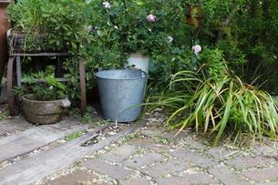 ガーデンの写真素材 [FYI00038036]