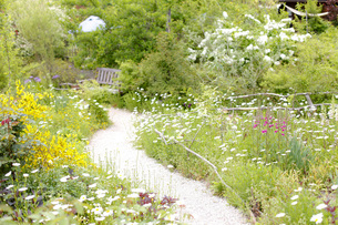 ガーデンの写真素材 [FYI00038041]