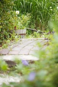 ガーデンの写真素材 [FYI00038050]