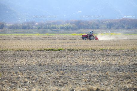 農業の写真素材 [FYI00038064]