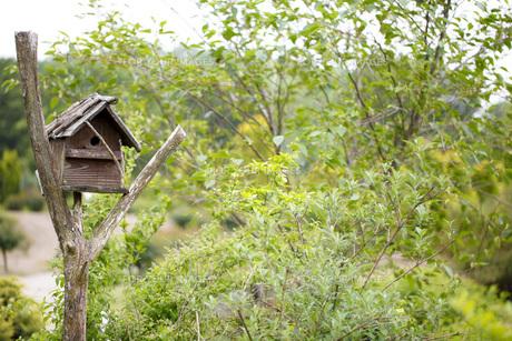 ガーデンの写真素材 [FYI00038067]
