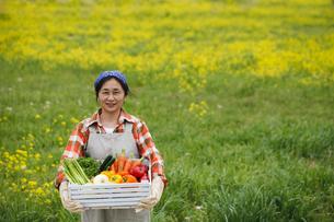収穫の写真素材 [FYI00038137]