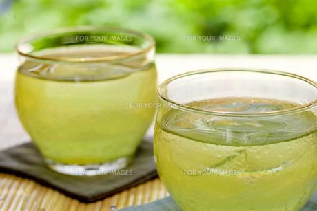 冷茶の写真素材 [FYI00038156]